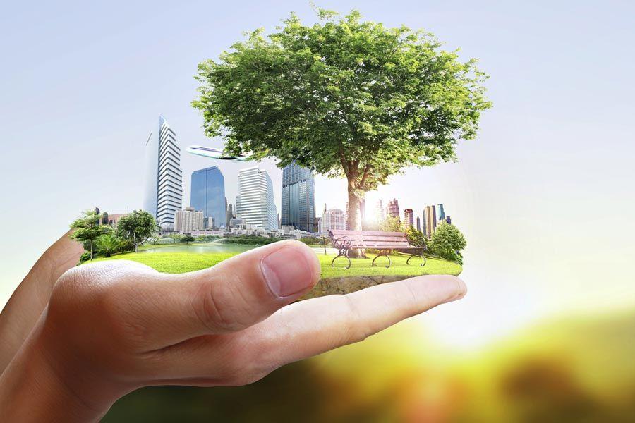 «Были бы деревья - уже хорошо». Дискуссия о будущем парка на Тучковом буяне набирает обороты | Иллюстрация violetkaipa/shutterstock.com