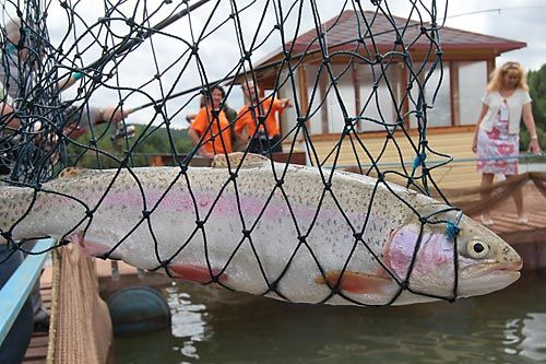 рыбалка на васильевском спб