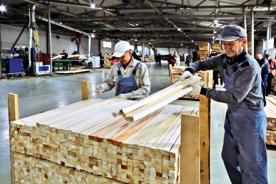 Осиновый щит. Деревообработчики Ленобласти перестали отпускать сырье в Китай | Лесопромышленники Ленобласти развивают мощности на вырост. Как видим, в только что построенном цехе еще много места для оборудования. ФОТО Александра ДРОЗДОВА